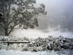 snow in the crater of Mt Buninyong